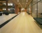 Floor Sanding Companies